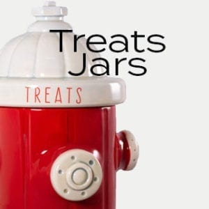 Treat Jars