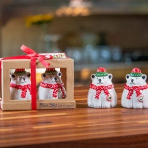 Christmas Bear Salt & Pepper Set