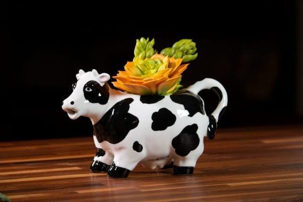 Cow Planter