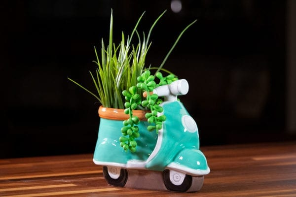 Scooter Planter