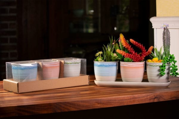 "Pastel Charm Set of 4"" Planters W/ Tray"
