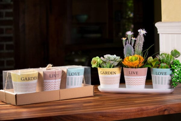 "Spring Sentiment Set of 4"" Planters W/ Tray"