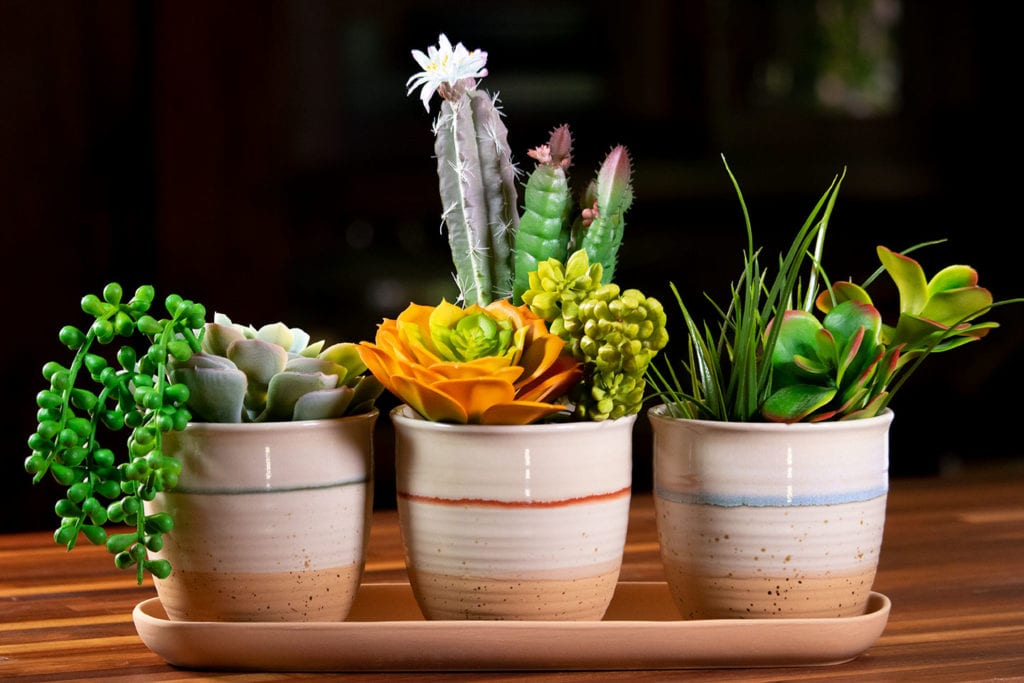 """Cannon Drip Set of 4"""" Planters W/ Tray"""