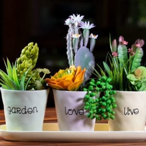 "Live Love Garden Set of 4"" Planters Tray"