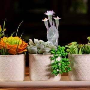"Gilbert Dots Set of 4"" Planters w/ Tray"
