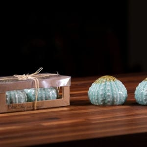 Turq Urchin Box Salt & Pepper Set