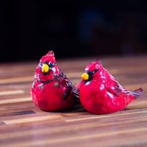 Cardinal Salt & Pepper