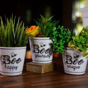 "Cammy Bee Planters 4"""