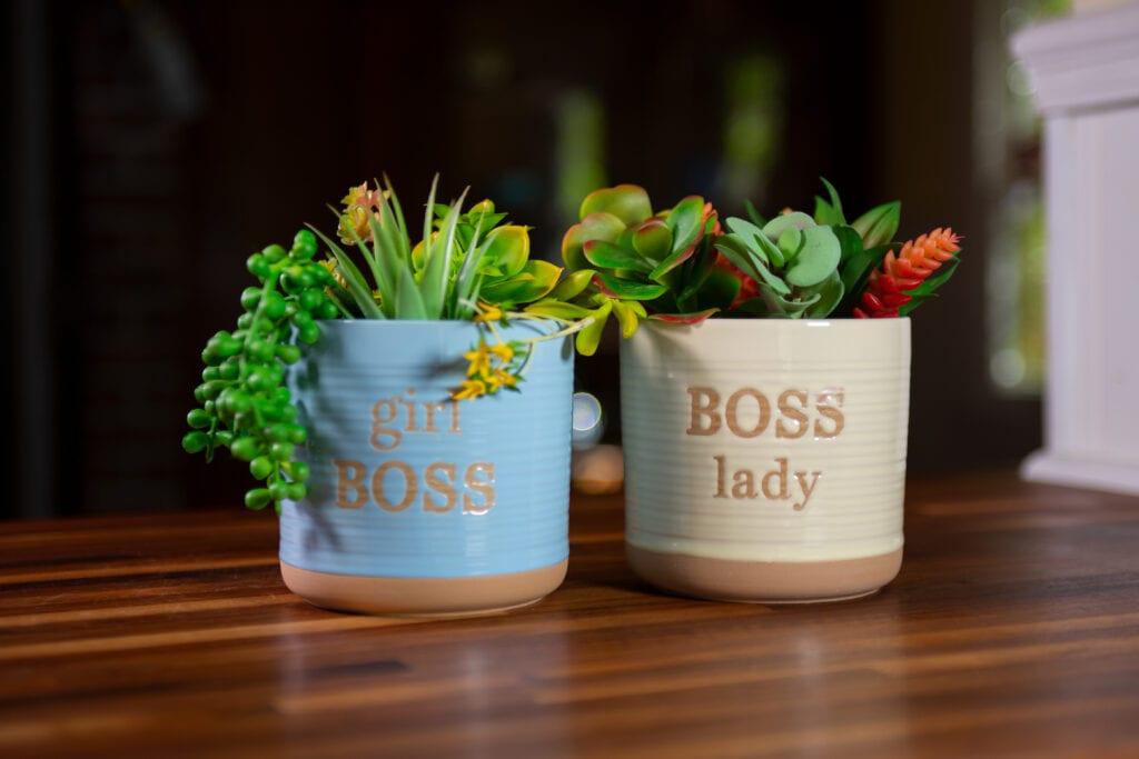 "Boss Planters 5"""