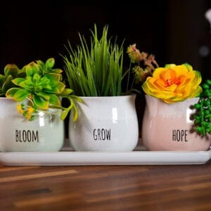 "Grandview Set of 4"" Planters W/ Tray"
